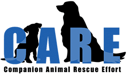 C.A.R.E. - Companion Animal Rescue Effort